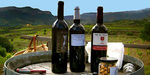 Day trips from Barcelona - wine tours
