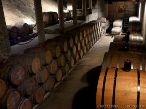 Priorat Wine Tours
