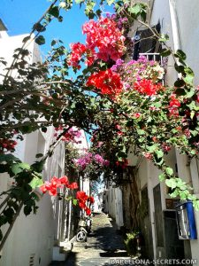 Cadaques private tour
